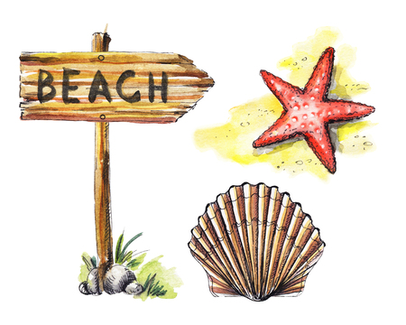 Set with wooden pointer, shell and starfish on white background. Watercolor hand drawn illustration