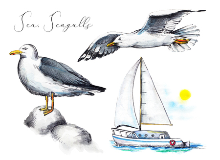 Set with two seagulls and a yacht on white background. Watercolor hand drawn illustration