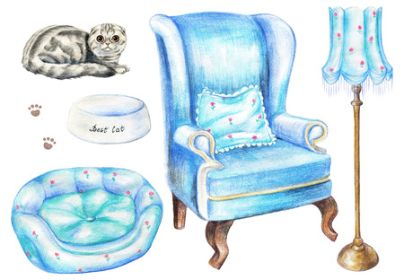 Set with armchair, floor lamp, scottish folded cat, bowl, and pet bed isolated on white background. Watercolor pencils hand drawn illustration