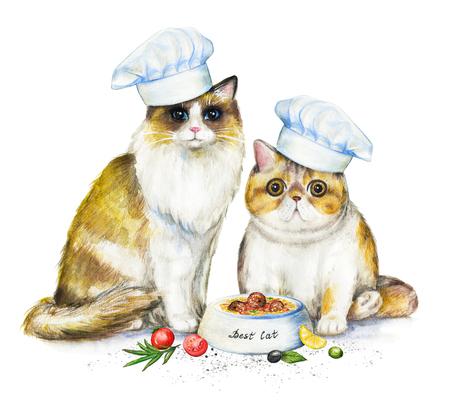 Zusammensetzung mit zwei Katzen in Kochmützen, Schüssel mit Futter und Gemüse. Aquarellstiftillustration lokalisiert auf weißem Hintergrund