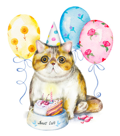 Composition with exotic cat in cap, bowl with cake, candies and flying balloons. Watercolor pencils illustration isolated on white background Stockfoto