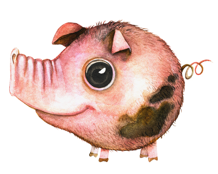 Picture of a pink round pig with blemishes in white background. Watercolor hand painted illustration