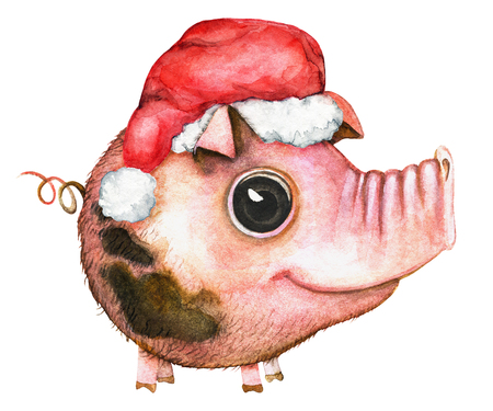 Picture of a pink round pig with blemishes in a Сhristmas hat on white background. Watercolor hand painted illustration