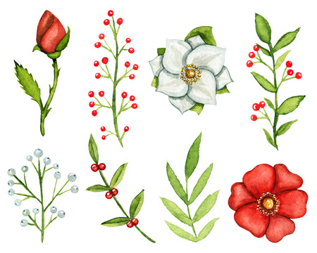 Vintage set with eight plant elements isolated on white background. Watercolor hand drawn illustration