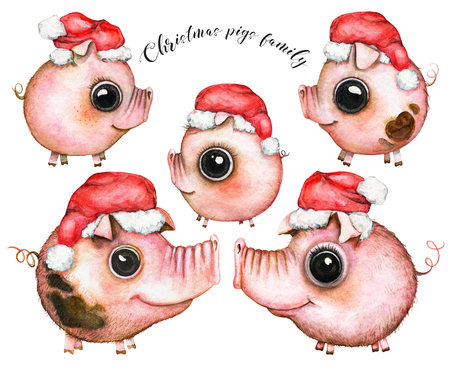Picture of a five pigs family members in Christmas caps on white background. Watercolor hand painted illustration