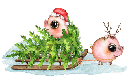 Christmas composition with two small piglets, sleigh, snow and Ð¡hristmas tree isolated on white background. Watercolor hand drawn illustration