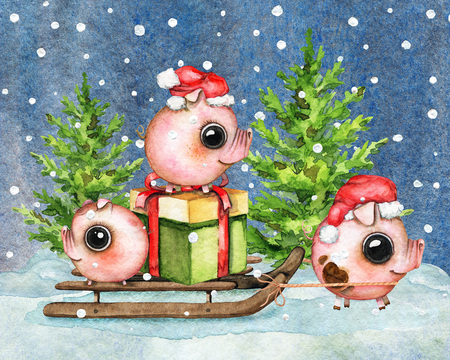 Christmas composition with three small piglets, gift box, sleigh, snow and two Сhristmas trees isolated on night sky in snowflakes background. Watercolor hand drawn illustration Stock Illustration - 110618955