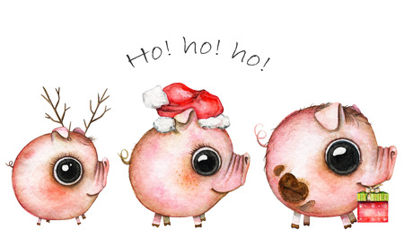 Christmas picture of a three cute pigs on white background. Watercolor hand painted illustration