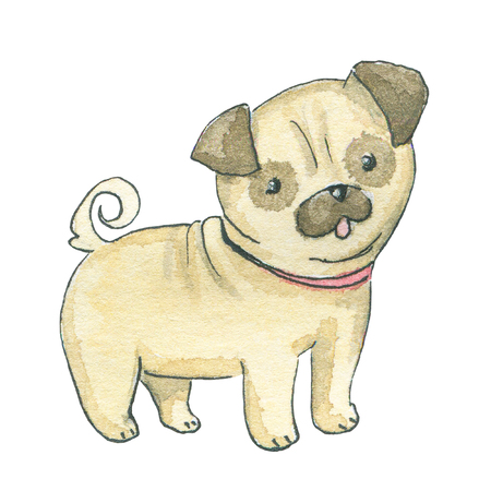 Pug dog isolated on white background. Watercolor hand drawn illustration Imagens