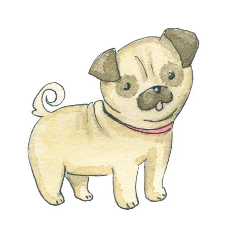 Pug dog isolated on white background. Watercolor hand drawn illustration Stock Photo