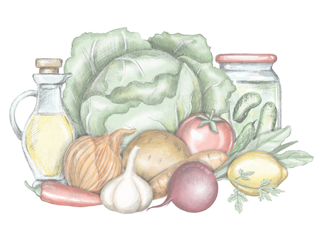 Composition with cabbage, beet, pepper, greens, tomato, garlic, onion, potato, lemon, oil and pickles isolated on white background. Lead pencil graphic and digital illustration