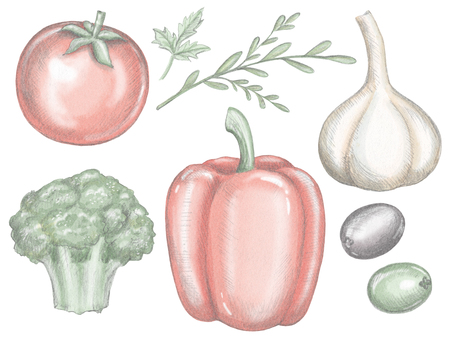 Vegetable set with bell pepper, garlic, broccoli, olives, greens and tomato isolated on white background. Lead pencil graphic and digital illustration