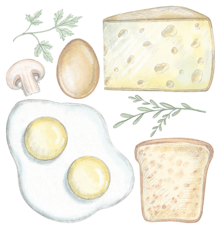 Set with eggs, cheese, toast, mushroom and greenery isolated on white background. Lead pencil graphic and digital illustration