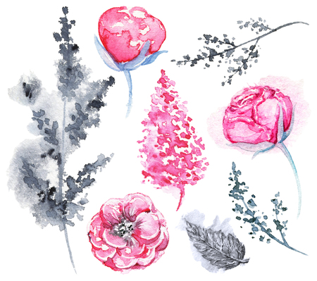 Set of pink and black variety of flowers and twigs isolated on white background. Watercolor hand drawn illustration Stock Photo