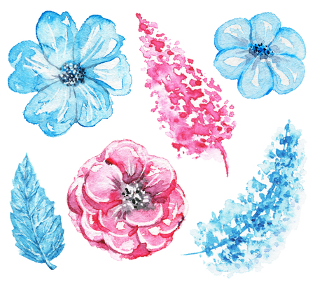 Set of variety of blue and pink flowers isolated on white background. Watercolor hand drawn illustration Stock Photo