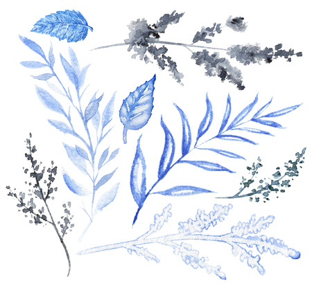 Set of variety of blue flowers and twigs isolated on white background. Watercolor hand drawn illustration
