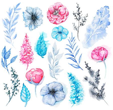 Big set of pink, blue and black variety of flowers and twigs isolated on white background. Watercolor hand drawn illustration
