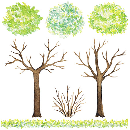 Set of elements of trees, grass and bushes isolated on white background. Watercolor hand painted illustration Stock Photo