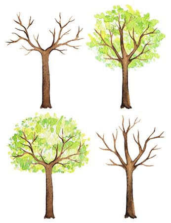 Set of trees with and without green foliage isolated on white background. Watercolor hand painted illustration