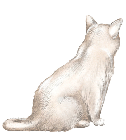 Brown cat sits back and observes isolated on white background. Watercolor and lead pencil graphic hand drawn illustration 스톡 콘텐츠 - 122350046
