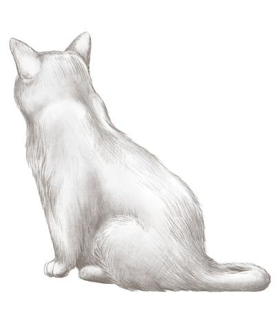 Black cat sits back and observes isolated on white background. Lead pencil graphic hand drawn illustration