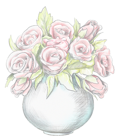 Sketch of vase with pink roses isolated on white background. Watercolor and lead pencil graphic hand drawn illustration Reklamní fotografie