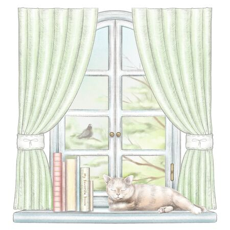 Composition with books and cat sleeping on the sill of the window with green curtains and  summer landscape isolated on white background. Watercolor and lead pencil graphic hand drawn illustration