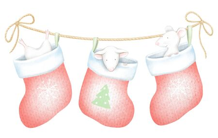 Set of three white mice in red Christmas socks isolated on white background. Watercolor and digital graphic hand drawn illustration