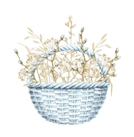 Vintage blue composition with wicker basket with spring willow branches, buds and dry herbs herbarium. Watercolor hand drawn illustration 写真素材