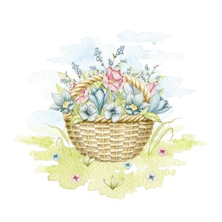 Vintage wicker basket with spring flowers bouquet on floral meadow. Watercolor hand drawn illustration Stock fotó
