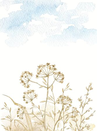Composition card with vintage graceful dry herbs herbarium against the background of heaven and earth. Watercolor hand drawn illustration