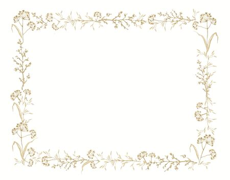 Rectangular frame with vintage graceful dry herbs herbarium isolated on white background. Watercolor hand drawn illustration