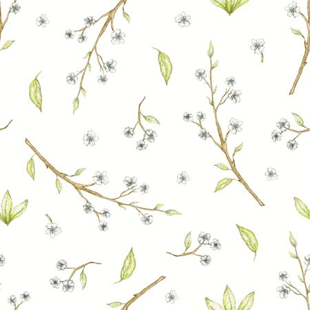 Seamless pattern with spring branches of apple, cherry, plum with flowers isolated on white background. Watercolor hand drawn illustration