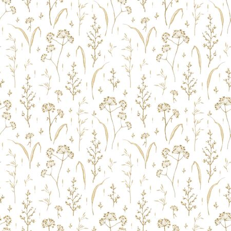 Seamless pattern with vintage graceful dry herbs herbarium isolated on white background. Watercolor hand drawn illustration