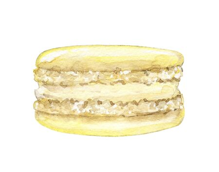 One yellow lemon macaroon isolated on white background. Watercolor hand drawn illustration