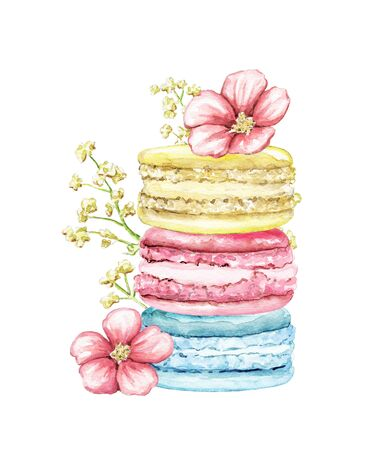 Composition pile with three various colors cakes macaroons and flowers isolated on white background. Watercolor hand drawn illustration