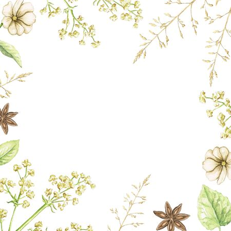 Border frame with vintage flowers, leaves and branches on white background. Watercolor hand drawn illustration