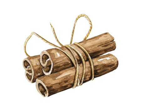Bunch of cinnamon sticks tied with rope isolated on white background. Watercolor hand drawn illustration Zdjęcie Seryjne