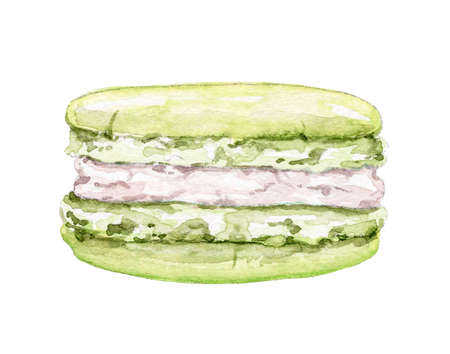 One pistachio green macaroon isolated on white background. Watercolor hand drawn illustration