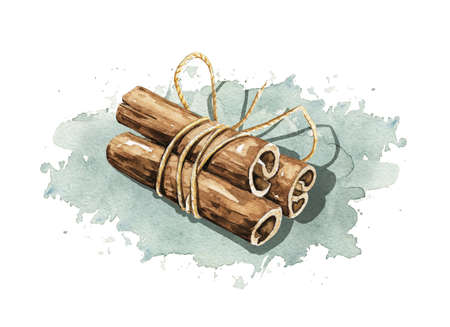 Bunch of cinnamon sticks tied with rope on blue stain shadow background. Watercolor hand drawn illustration