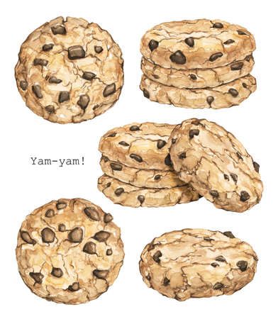Set with home made round chocolate chip cookies isolated on white background. Watercolor hand drawn illustration