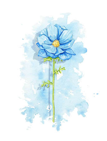 One vintage blue flower on stain background. Watercolor hand drawn illustration