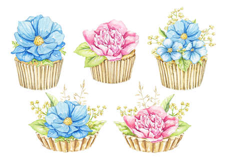 Set with bouquets with pink and blue flowers in cupcakes isolated on white background. Watercolor hand drawn illustration 版權商用圖片