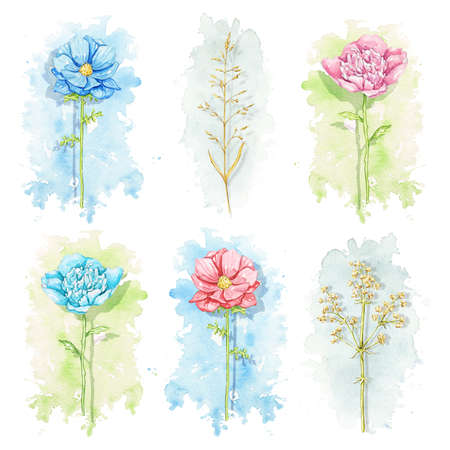 Set with various flowers and twigs on colorful stains background. Watercolor hand drawn illustration