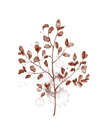 Autumn vintage plant branch with red leaves and splashes isolated on white background. Watercolor hand drawn illustration Imagens