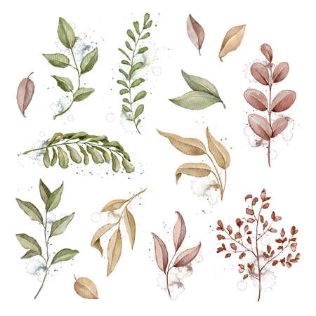Set with autumn varied leaves and plants isolated on white background. Watercolor hand drawn illustration