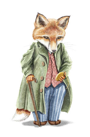Watercolor vintage man redhead fox in suit holding gold pocket watch and walking stick isolated on white background. Watercolor hand drawn illustration sketch 版權商用圖片