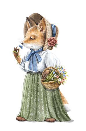 Watercolor vintage girl redhead fox in skirt, blouse and hat holding floral basket and sniffs flower isolated on white background. Watercolor hand drawn illustration sketch