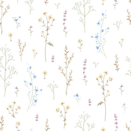 Seamless floral pattern with meadow dried flowers isolated on white background. Watercolor hand drawn illustration sketch