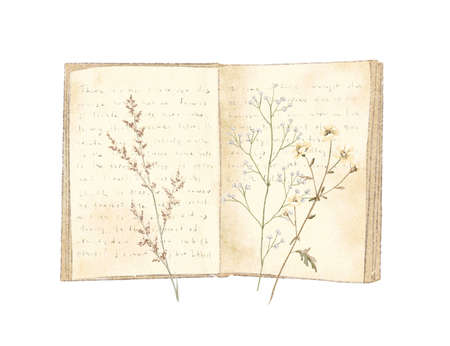 Watercolor vintage composition with old open book and dried flowers isolated on white background. Hand drawn illustration sketch